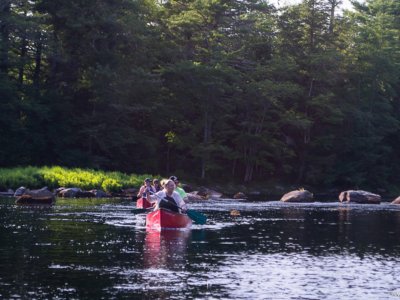 Canoe armada on the Mersey River