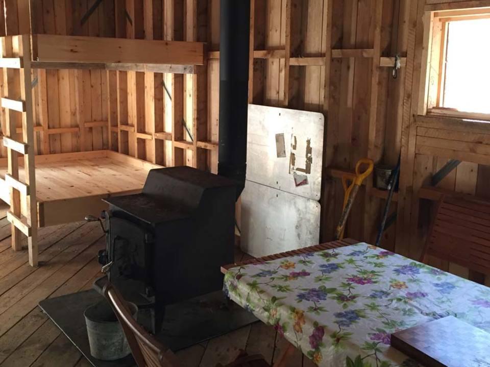 Enter the cabin!